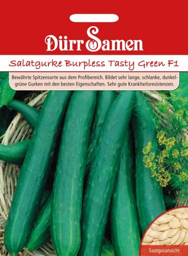 Dürr Samen 0903 Salatgurke Burpless Tasty Green F1 (Salatgurkensamen)