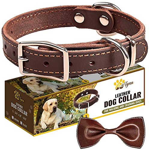 Leather Dog Collar for Puppy and Small Dogs - Heavy Duty Wide Dog Collars with Durable Metal Hardware & Double D-Ring - (S: ¾ Width / 10'- 14,5' Length, Brown)