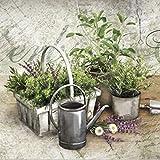 Dekolust Küchenläufer 180×50 cm Summer Herbs Fußmatte Küchenteppich - 4
