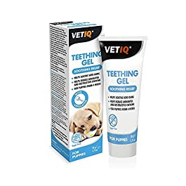 VetIQ Teething Gel for Puppies x Size: 50 Gm