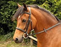 Good quality leather bridle Padded Noseband and Browband Complete with Rubber Reins