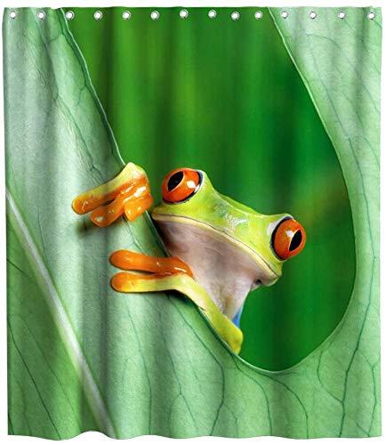 Wild One Curtain Lustiger Bunter Grüner Frosch-Karikatur-Thema-Gewebe-Duschvorhang Stellt Kinderbadezimmer Mit Den Wasserdichten Waschbaren Haken EIN,W122 X H183 CM/48X72 Zoll
