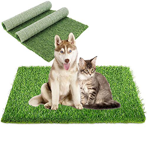 mats for dogs to urinate on