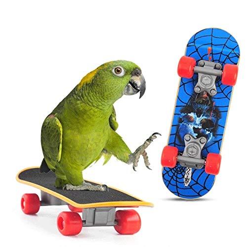 WYHM Pet Bird Supplies Toys Pet Bird Supplies Pet Intelligence Foot-talon Toys Training Mini Skateboard Stand Perch for Parrot For Birds