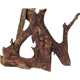 JBL Mangrovenholz-Wurzel für Aquarien und Terrarien, Mangrove