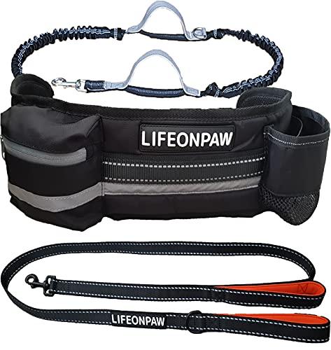 Hundeleine mit Leine für Hunde, mit Canicross-Gürtel, Stoßdämpfer, ausziehbar, Komplett-Set, ideal für Laufen, Joggen, Laufen, Spazierengehen und Wandern