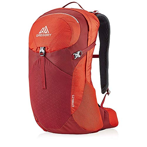 Gregory Citro Backpack Sac à Dos Homme, Rouge (Rouge Vif), Taille Unique