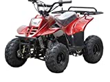 TAO TAO 110cc ATV Fully Automatic Four Wheelers ATV Quads for Kids Burgundy