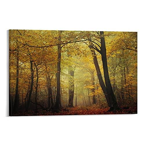 Fall Impressions - Poster artistico da parete, decorazione per la camera da letto, 20 x 30 cm