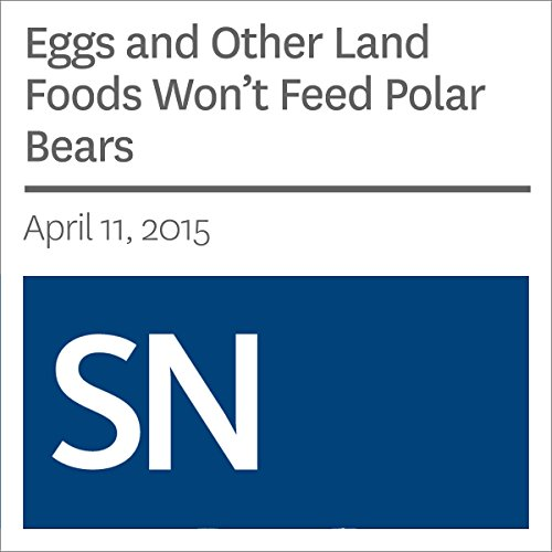 Eggs and Other Land Foods Won.t Feed Polar Bears                   By:                                                                                                                                 Sarah Zielinski                               Narrated by:                                                                                                                                 Mark Moran                      Length: 3 mins     Not rated yet     Overall 0.0