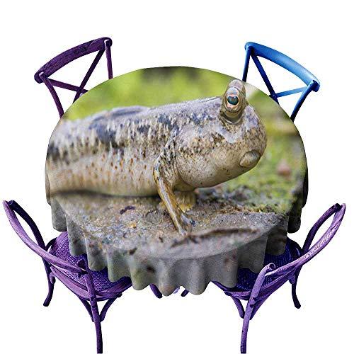Massagestab, handgehaltener kabelloser Massagevibrator, geben Ihnen eine komfortable Erfahrung, Bitte seien Sie versichert, zu kaufen-Purple