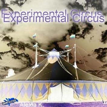 Experimental Circus