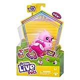 Little Live Pets 26027 Lil Bird-Styles Peut Varier.