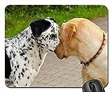 Yanteng Alfombrillas para ratón - Las Cabezas de los Perros Hacen posar la Fuerza de la demostración de Ernst