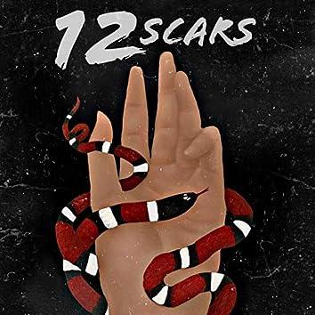 12 Scars