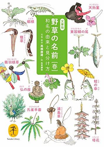 ヤマケイ文庫 野草の名前 春の詳細を見る