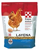 Purina Layena | Nutritionally Complete Layer Hen Feed Pellets | 10 Pound (10 lb) Bag