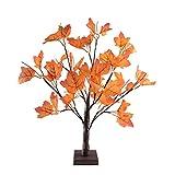 24 LEDs Ahornblatt Baum Licht, 50cm Schreibtisch Ahorn-Blätter (Herbst) Baumlicht Warmweiß,Herbst Dekoration Blätter Lichterketten für Thanksgiving, Weihnachten, Innen Deko - 6