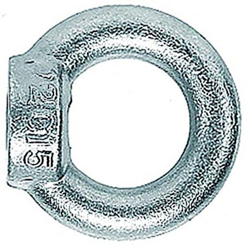 Fischer Ringmutter RI M12 E (91579) Profisortiment- Inhalt: 1 Stück