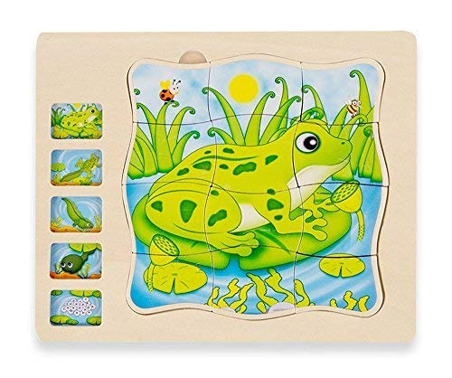 Life Cycle of a Frog Montessori Puzzle