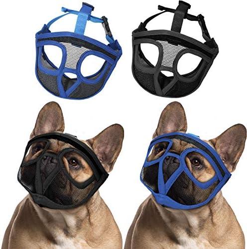 French bulldog muzzle