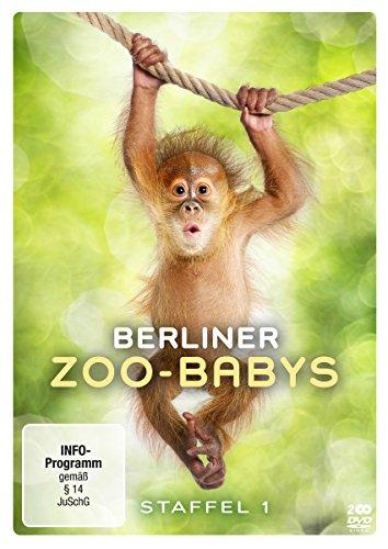 Berliner Zoo-Babys - Staffel 1 [2 DVDs]