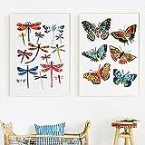 Blanriguelo Gemälde auf Leinwand Arten von Schmetterlingen
