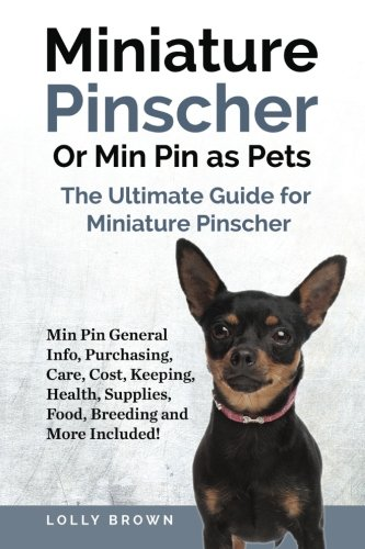 Miniature Pinscher Or Min Pin as...