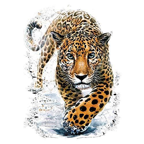 Color Bügeltransfers, DIN A4, filigran ohne Hintergund   Textilien wie T-Shirts & Taschen mit Bügelmotiven verzieren   Bilder schnell & einfach aufbügeln   DIY Textildesign (Jaguar)