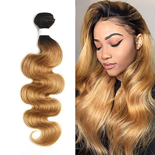 X-TRESS Body Wave Human Hair Bundles One Bundle Ombre Honey Blonde Body Wave Brazilian Hair Weave 100% Human Hair Extensions Bundles Ombre Color 27 Hair Weave(20 Inch, T1B/27)