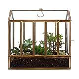 "Urban Born Handmade Greenhouse Large Glass Terrarium — 10.25"" x 9.75"" x 6.5"" (Brass Steel)"