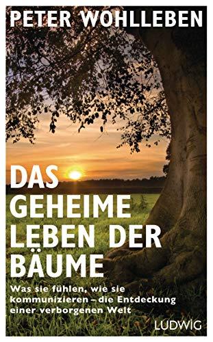 """Buch """"Das geheime Leben der Bäume"""""""