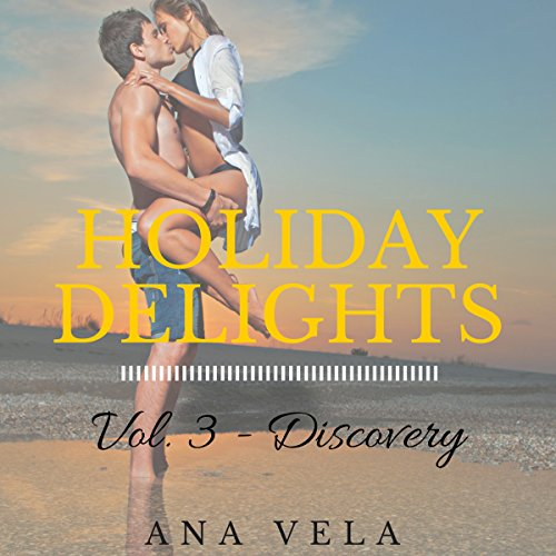 Holiday Delights: Volume Three - Discovery audiobook cover art