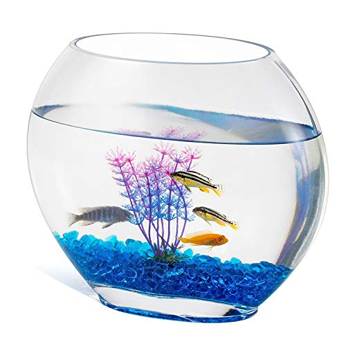 hygger Small Glass Fish Tank, Fish Bowls with Stones Aquariums Ornamental Tree Branches and Small Purple Grass