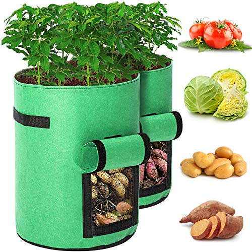 Tvird Potato Grow Bags,2 Pack-10 Gallon Planting Heavy Duty Pouch Fabric Pots,with Handles and Velcro Window of Premium Breathable Cloth Bags for Potato/Plant Container(Green)