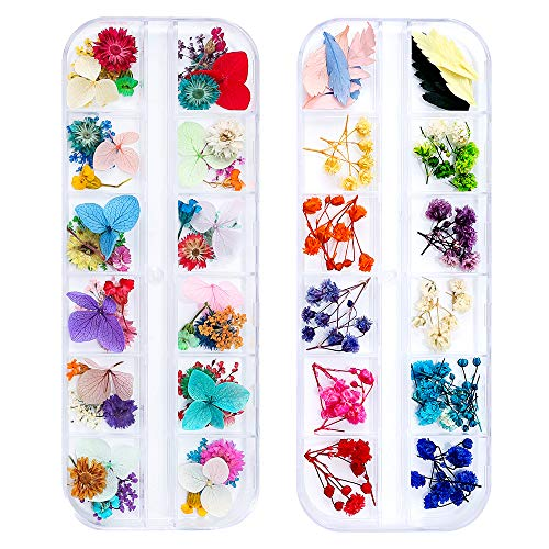 iFancer 108 Pcs Dried Flowers for Resin Nail Art 62 Colors 3D Dry Flowers for Nails 2 Boxes Small Tiny Dried Flowers for Nail Art Little Pressed Real Natural Flower Nail Art Design Decoration Supplies