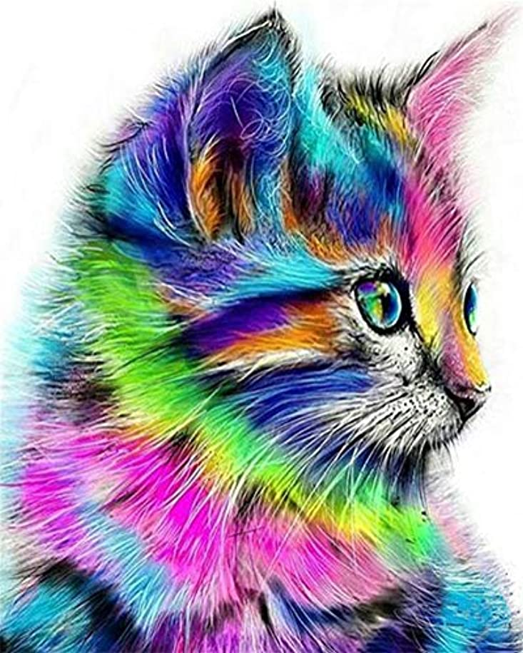 DIY Oil Painting kit, Paint by Numbers kit for Kids and Adults - Colorful cat 16x20 inches (Without Frame)