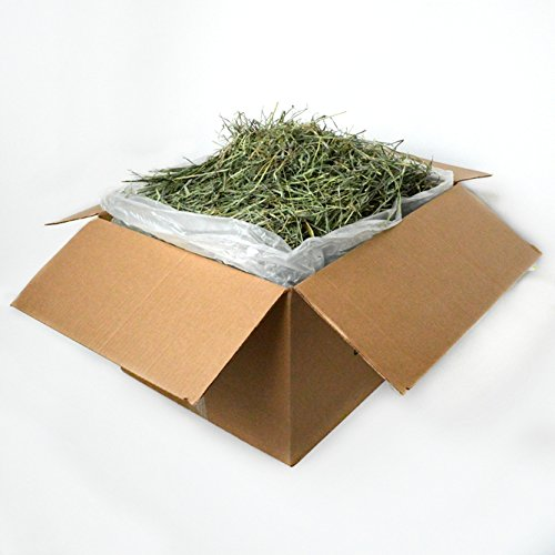 Mountain Grass Hay 25 lbs SKU164