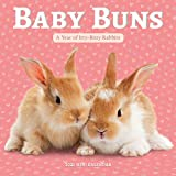 Baby Buns Mini Wall Calendar 2021: A Year of Itty-Bitty Rabbits