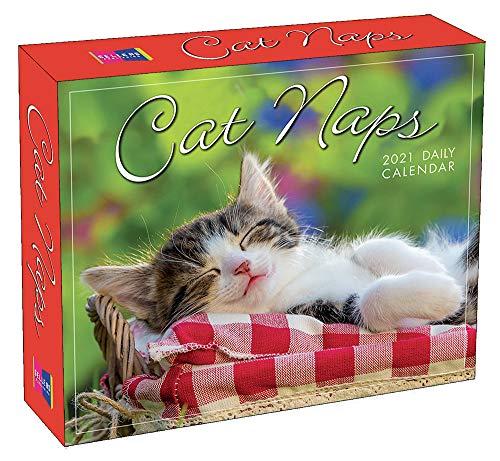 Cat Naps 2021 Calendar (Box)