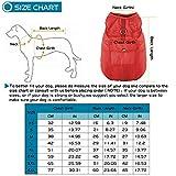 Zoom IMG-1 kinglead cappotto per cani double