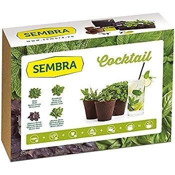 Huerto Urbano - Kit Happy Garden Menta Piperita - Batlle: Amazon ...