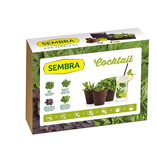 Sembra - Kit à Faire Pousse - Cocktail