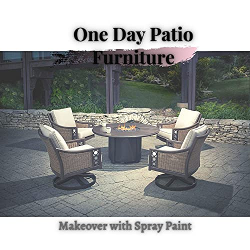One Day Patio Furniture: Makeover with Spray Paint (English Edition)