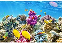 HD 7x5ft水中世界背景カラフルな海底海洋水族館サンゴ礁写真背景子供女の子男の子誕生日パーティーの装飾海写真スタジオの小道具