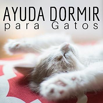 Ayuda Dormir para Gatos - Canciones para Sueño de Mascotas