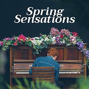 Spring Sensations - Positive Energy Playlist