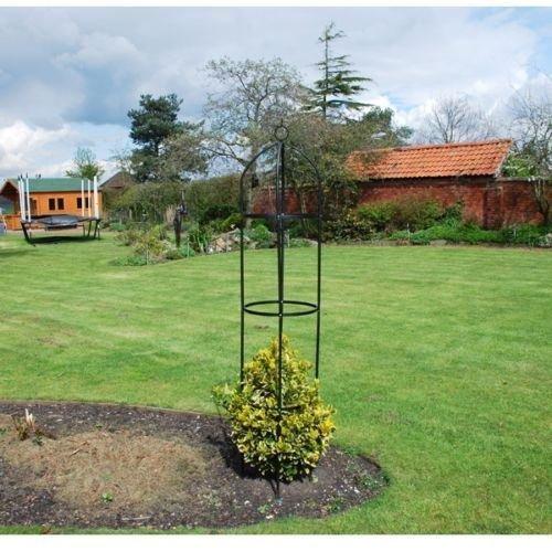Generic.. G Plan pour plante grimpante Métal Me Noir Obélisque support f Cadre de support G Plante Supp Jardin noir Ellis 1.9 m Ivy Treillis 1.9 m
