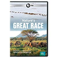 Nature's Great Race [DVD] [Import]