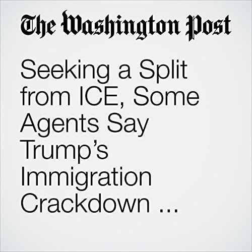 Seeking a Split from ICE, Some Agents Say Trump's Immigration Crackdown Hurts Investigations and Morale copertina